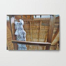 165//365 Metal Print