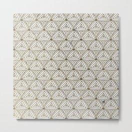 spi33 Metal Print