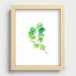 Eucalyptus Recessed Framed Print