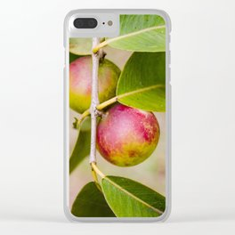 camu camu Clear iPhone Case
