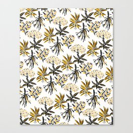 Herbal Apothecary Canvas Print