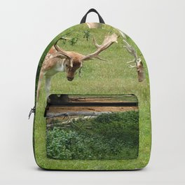 Spotted Deer Grazing in Grass Backpack