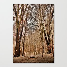 Winter's Bench Canvas Print