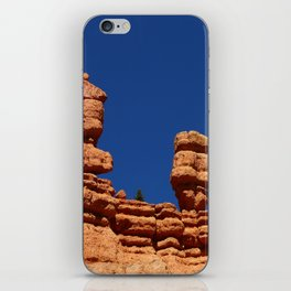 Dixie Forest Hoodoos iPhone Skin