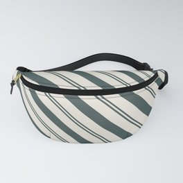 Night Watch PPG1145-7 Thick and Thin Angled Stripes on Horseradish Off White PPG1086-1 Fanny Pack