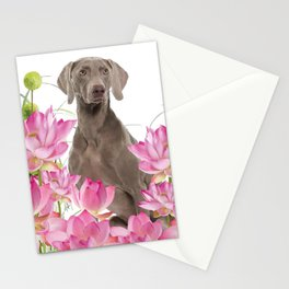 Weimaraner Lotos Flowers Stationery Cards