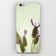 Lavender moment iPhone & iPod Skin