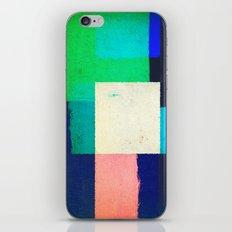 Community India iPhone & iPod Skin