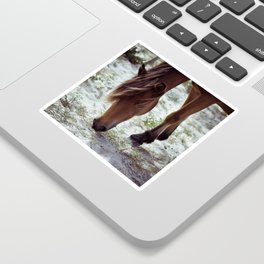 grazing Sticker