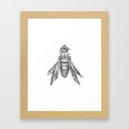 Orchid Bee Illustration Framed Art Print
