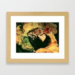 Perroquet  Framed Art Print