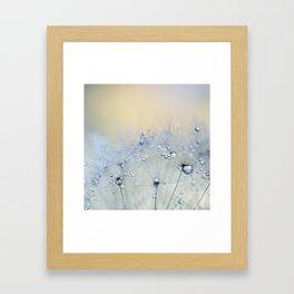 ice blue dandelion Framed Art Print