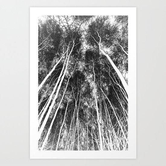 Forest Art Art Print