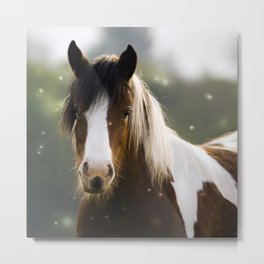 Pony and flies Metal Print