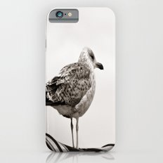 I'm waiting for you iPhone 6s Slim Case