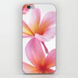 Pink Frangipani iPhone Skin