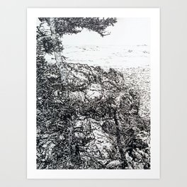 Bass Harbor with Black Spruce Art Print