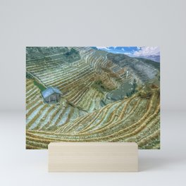 Rice Field Landscape Mini Art Print
