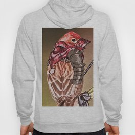Birds In Armor 2 Hoody