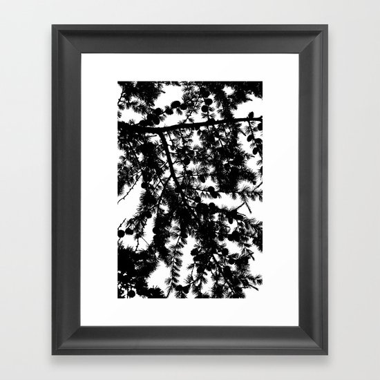 B&W Evergreen Framed Art Print
