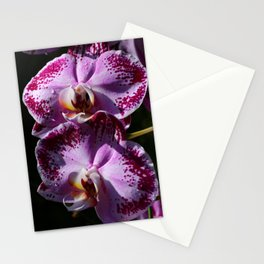 My Tender Love Stationery Cards