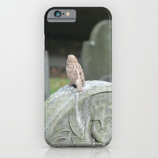 Sparrow in King's Chapel Burying Ground Boston iPhone & iPod Case