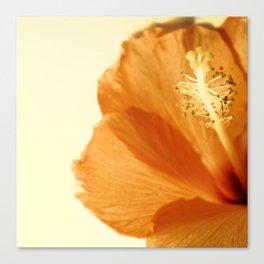 Pop Art Flower No. 3 Canvas Print