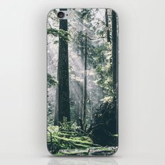 Rays iPhone Skin