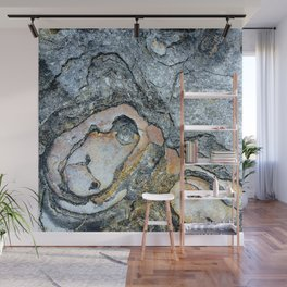 Florida Sandstone Pattern #1 Wall Mural