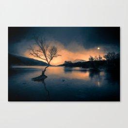 Lone Tree Snowdonia Canvas Print