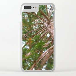 Mammoth pine tree from below Clear iPhone Case