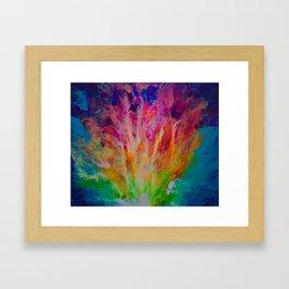 Rainbow Explosion Framed Art Print