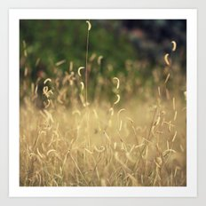 Curly Grass Art Print