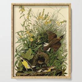 Meadow Lark (Sturnella magna) Serving Tray