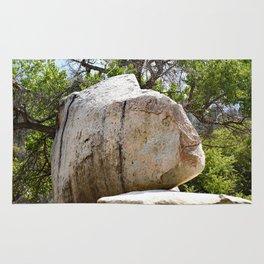 Rock (fish) 20180422 155334 Rug