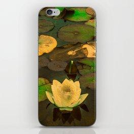 Summer Waterlily Pond iPhone Skin