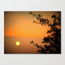 An Early Moon  Canvas Print