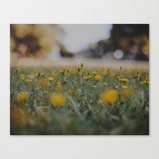 Yellow Summer Canvas Print