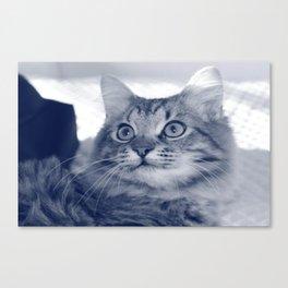 Cat-Pissu *-* [SWAG] Canvas Print