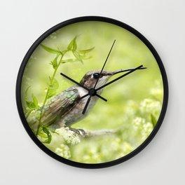 Hummingbird XIV Wall Clock