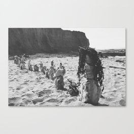 Sea Sculptures Canvas Print