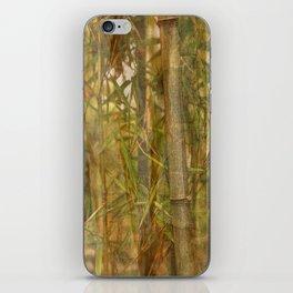 Bamboo screen iPhone Skin