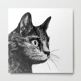 gato Metal Print