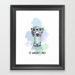 Greyhound with glasses Framed Art Print