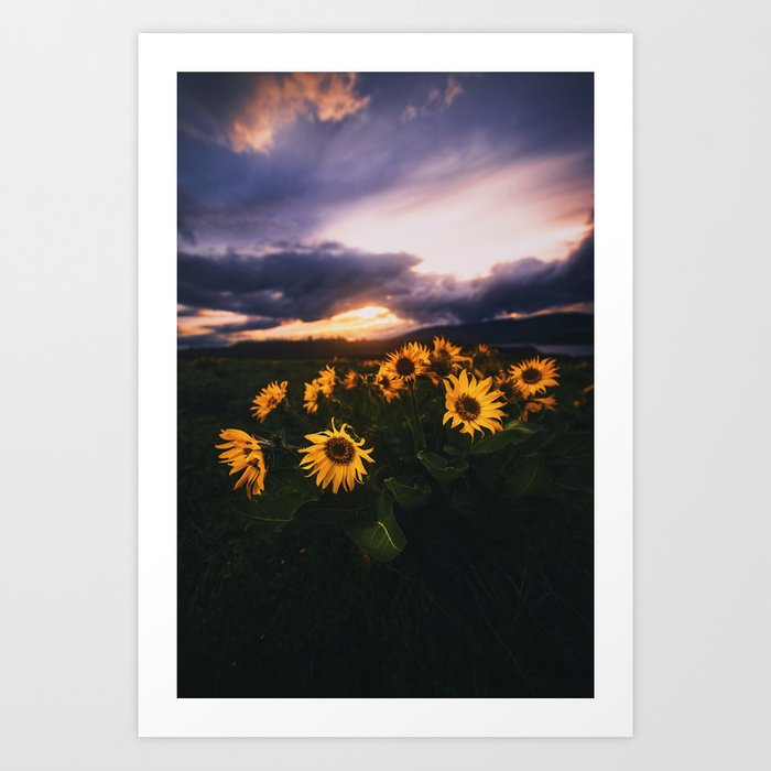 Into the West Art Print