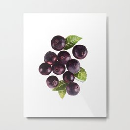Acai Berry Metal Print