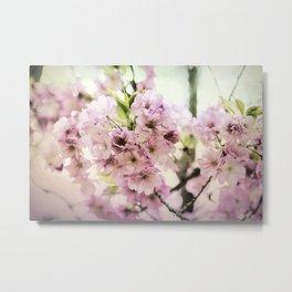vintage cherry blossom Metal Print