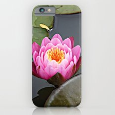 Pink Lilly iPhone 6s Slim Case