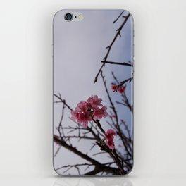 Petite iPhone Skin