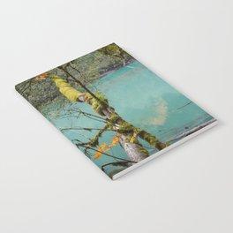 Medium Blue Notebook